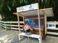 piano salt spring island